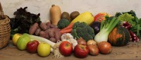 fruitslegumesbio