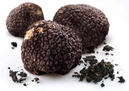 truffes_noires_440