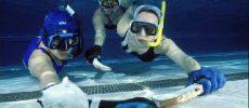Hors Jeu; Les sports Sub-aquatiques