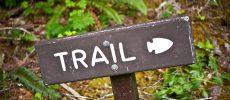 Balle Au Centre; Le Trail