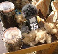 Émission Spéciale en direct de la 6ème Journée de la laine à Génolhac