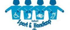 BALLE AU CENTRE : SPORT ET HANDICAPS