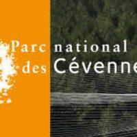 Séquence Parc_Octobre 2019