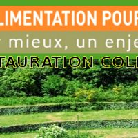 Table Ronde sur l'Alimentation en Restauration Collective